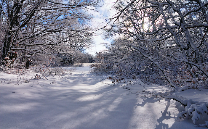 Снег на плато