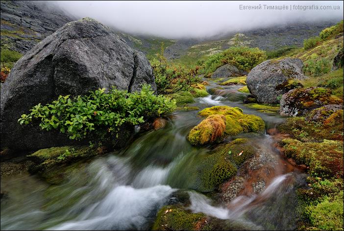 Приток реки Часнайок