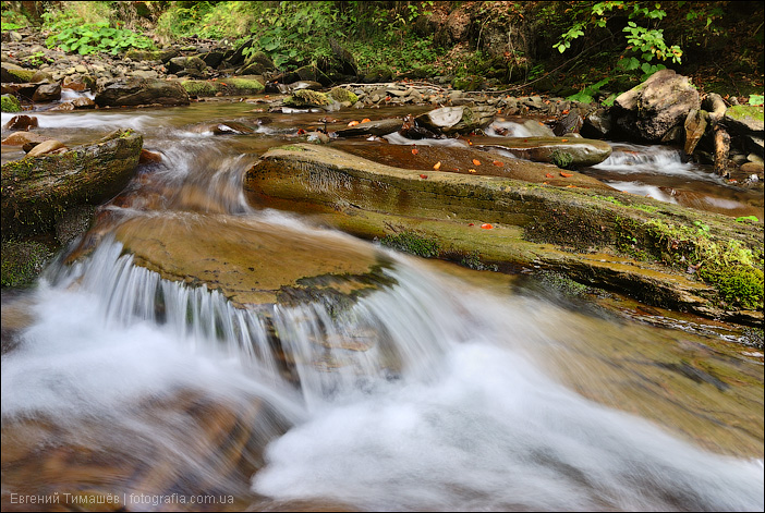 Река Пилипец