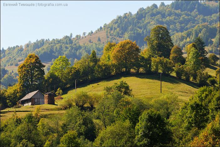 Карпатский домик на холме