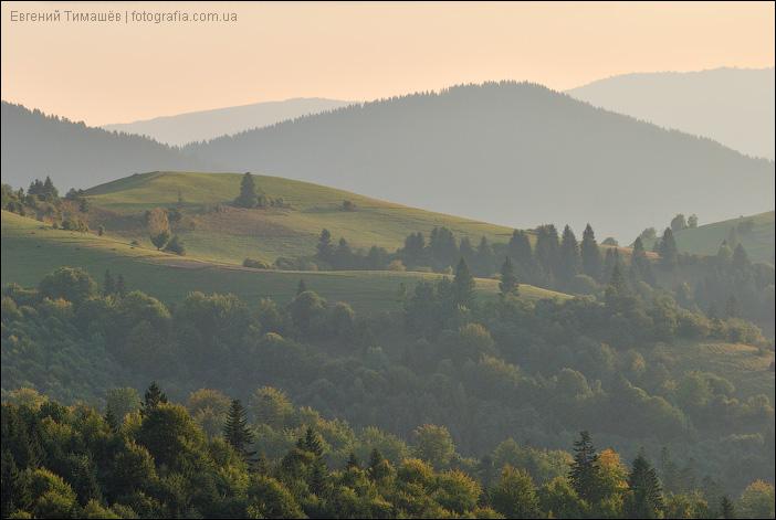 Карпатские холмы