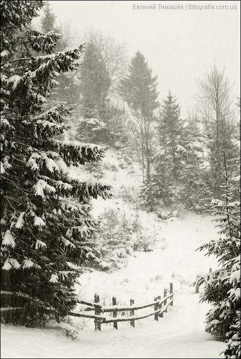 Снегопад в Яблунице