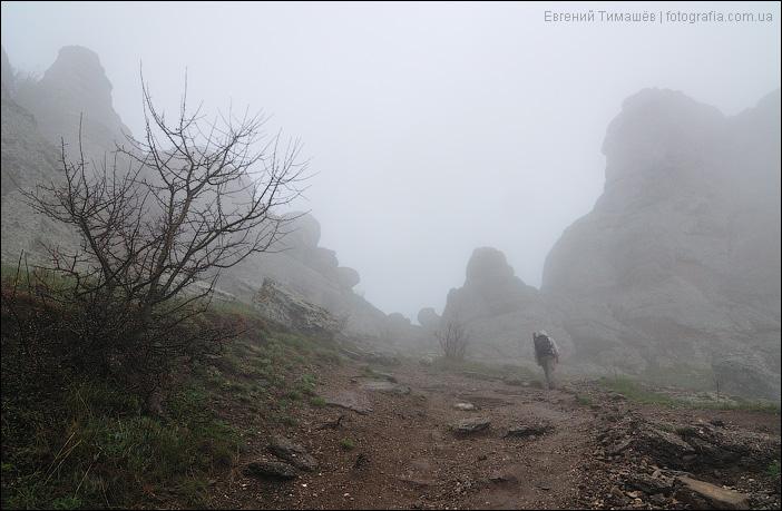 В тумане Демерджи