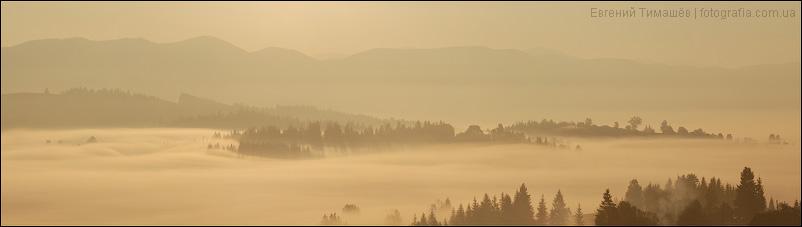 Туманный рассвет в Яблунице