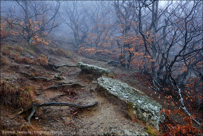 Туманными тропами Демерджи