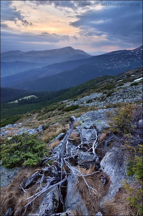 Карпаты, вид со склона горы Туркул