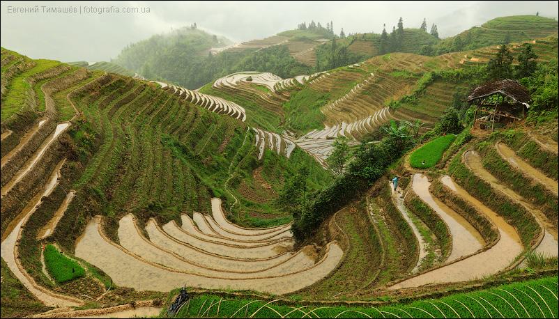 Китай, Пиньян, рисовые террасы Лонгджи, панорама
