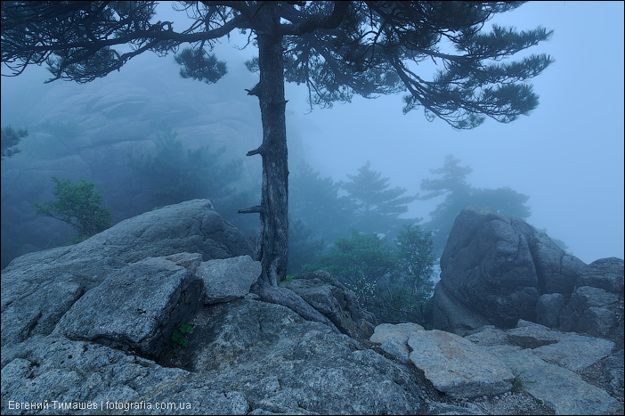 Туман в Хуаньшань, Китай