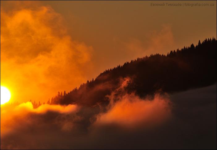 Восход солнца в туманных Карпатах