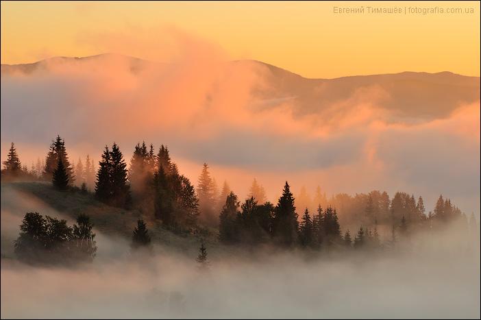 Туманное утро в Карпатах, Дземброня