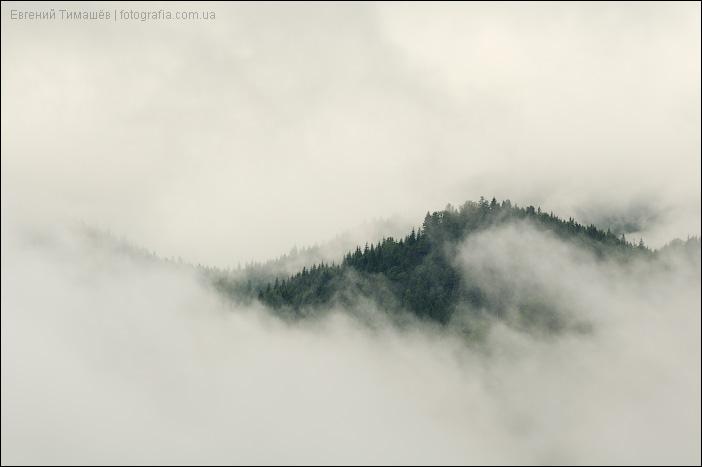 Холм в тумане, Карпаты