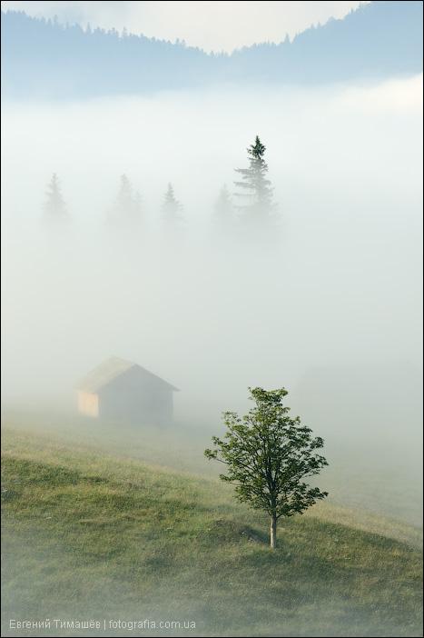 Сельский домик в тумане, Карпаты, Дземброня