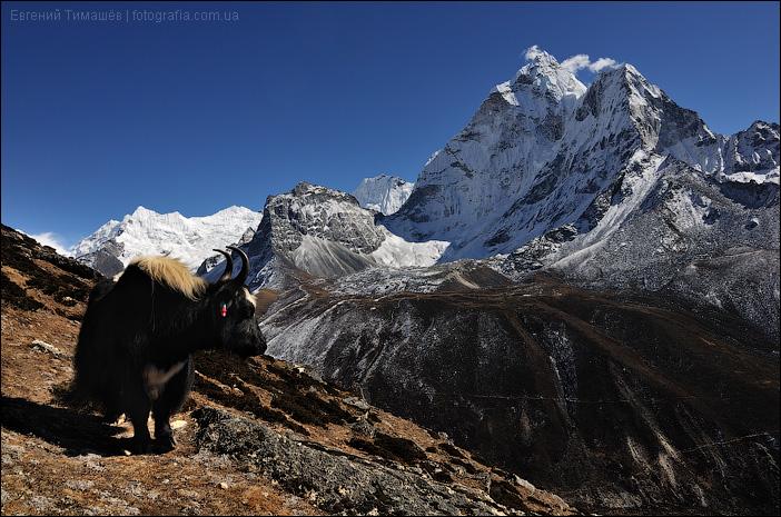 Як в Гималаях, Непал