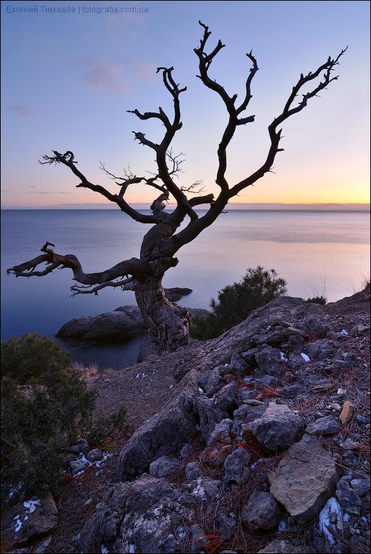 Крым, Новый свет