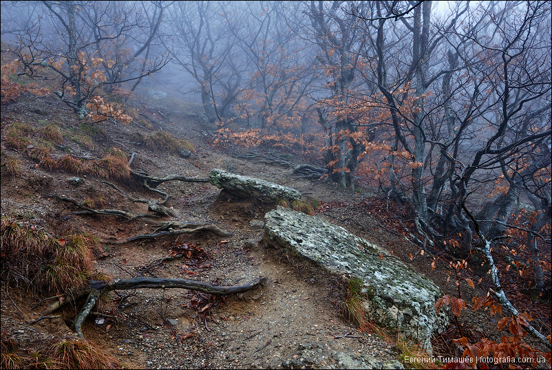 Крым, Демерджи