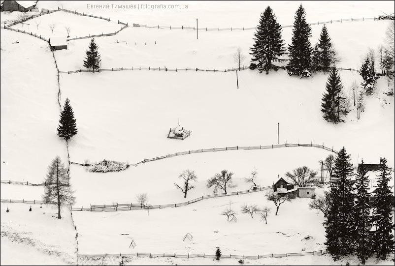 Заборы, елки, снег, зима