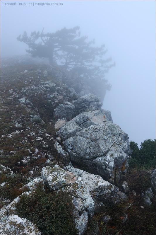 Туман на Ай-Петри в Крыму