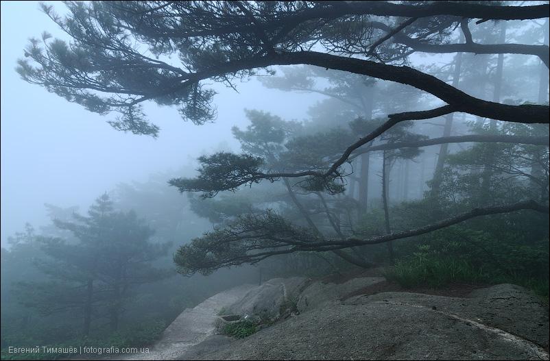 Туман в Хуаншань, Китай