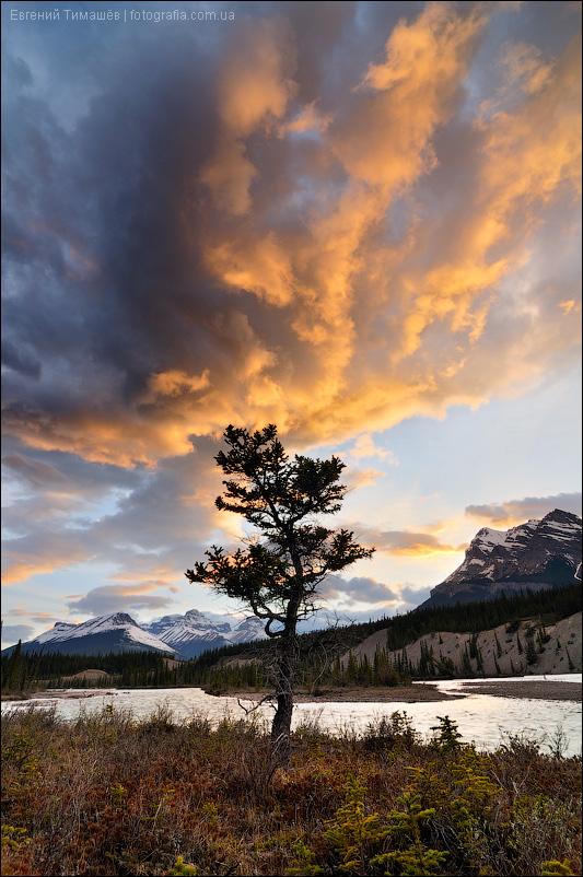 North Saskatchewan River, Canadian Rockies, Канада