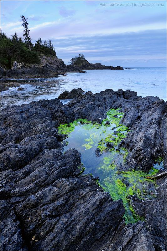 Юклулет (Ucluelet), Канада, остров Ванкувер (Vancouver Island)
