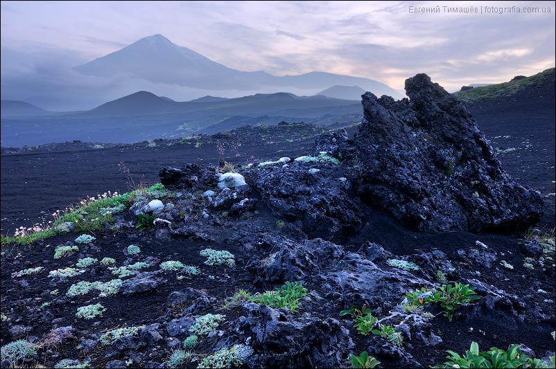 Камчатка, г. Острый Толбачик (3682 м)