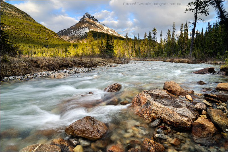 Ручей Сильверхорн (Silverhorn Creek), Канада