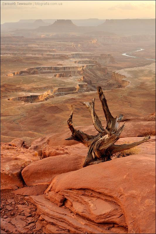 США, национальный парк Каньонлэндс (Canyonlands)