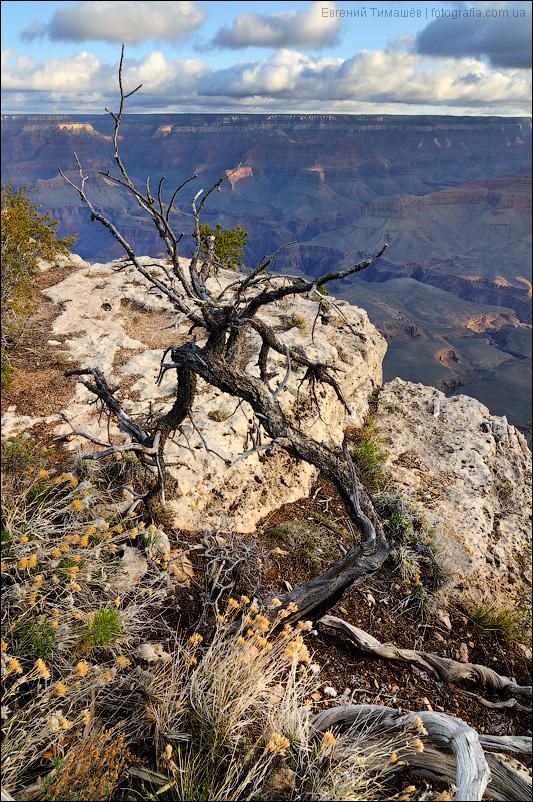 Гранд каньон (Grand Canyon), США