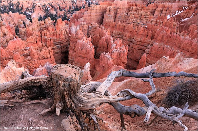 Каньон Брайс (Bryce Canyon), США