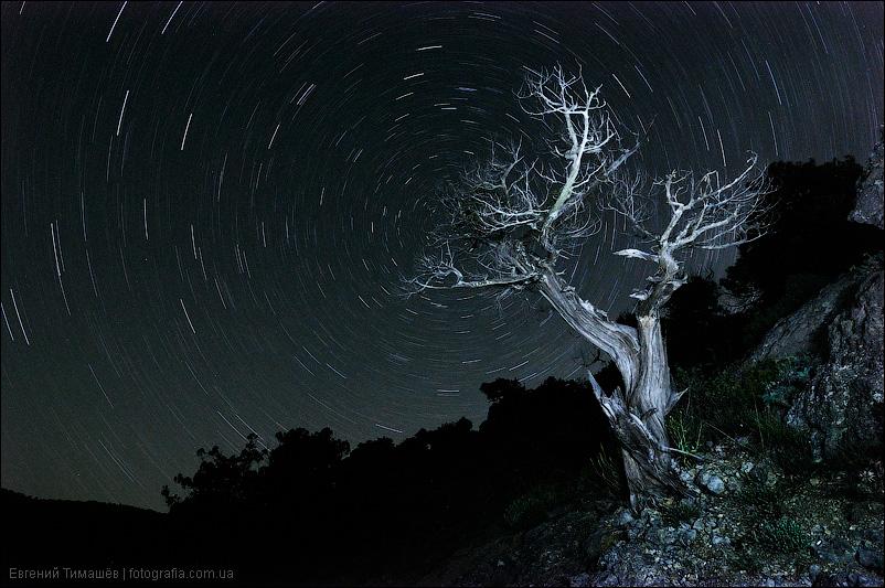 Ночь в Новом свете, Крым