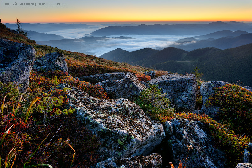Утро в Карпатах, вид с окрестностей горы Вухатый камень