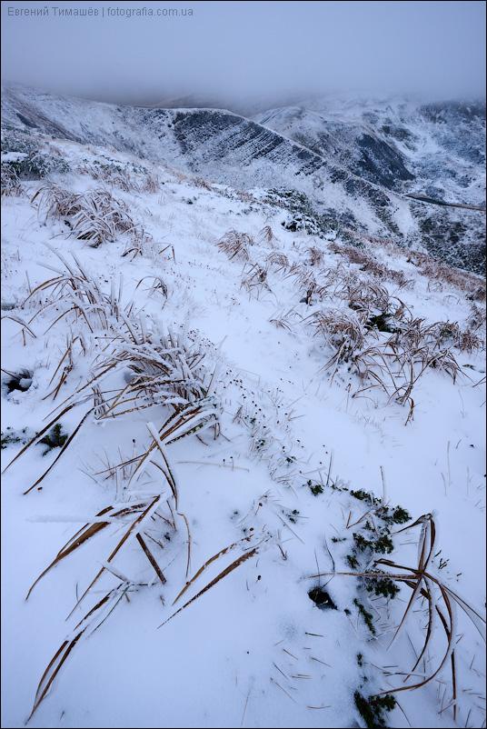 Снег на Свидовце, Карпаты