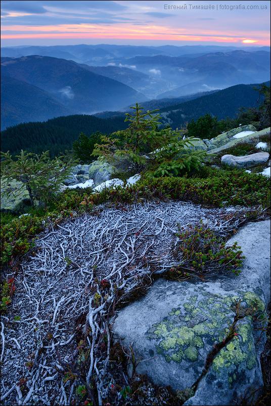 Рассвет на горе Хомяк, Горганы, Карпаты