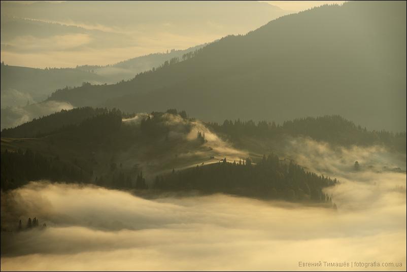 Туман в утренних карпатских горах