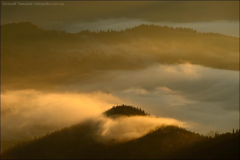 Рассветный туман в Карпатах