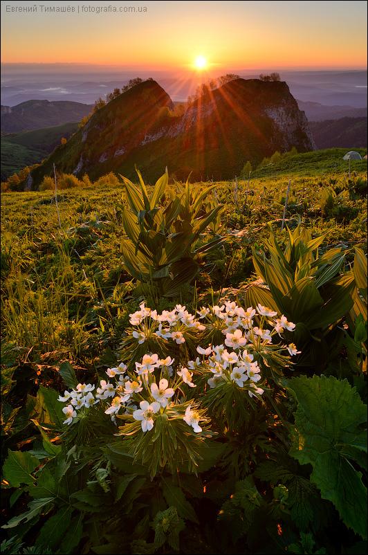 Кавказ, Адыгея, Большой Тхач, горы, пейзаж, рассвет