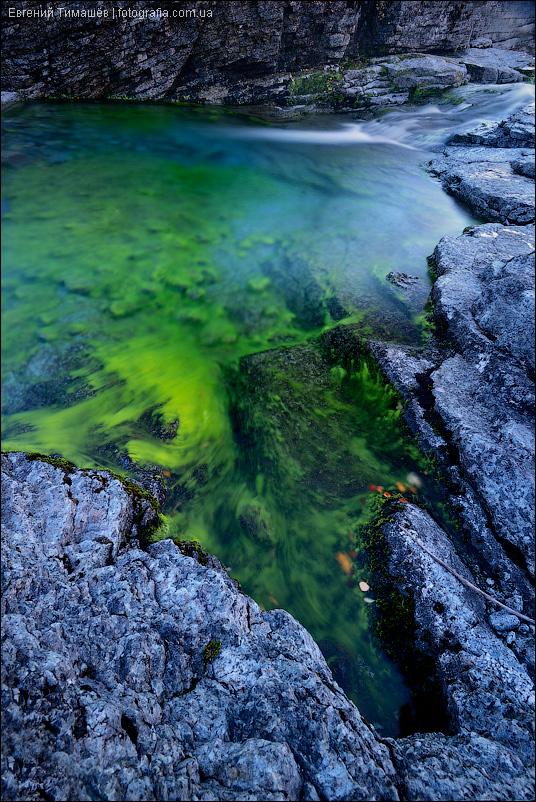 водоросли, сумерки, ручей Меридиональный, Хибины