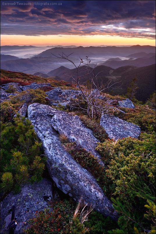 Рассвет на Вухатом камне, Карпаты, горы, пейзаж