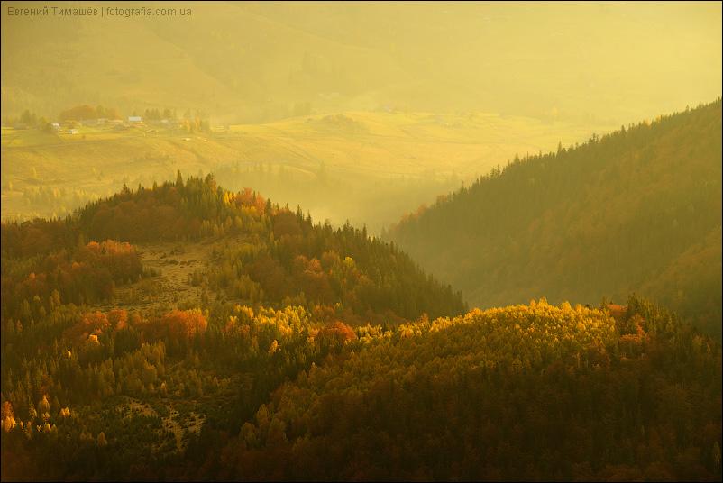 Золотые карпатские холмы