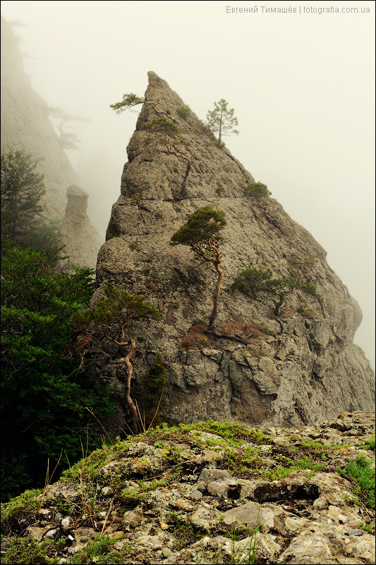 Крым, горы, туман, Демерджи
