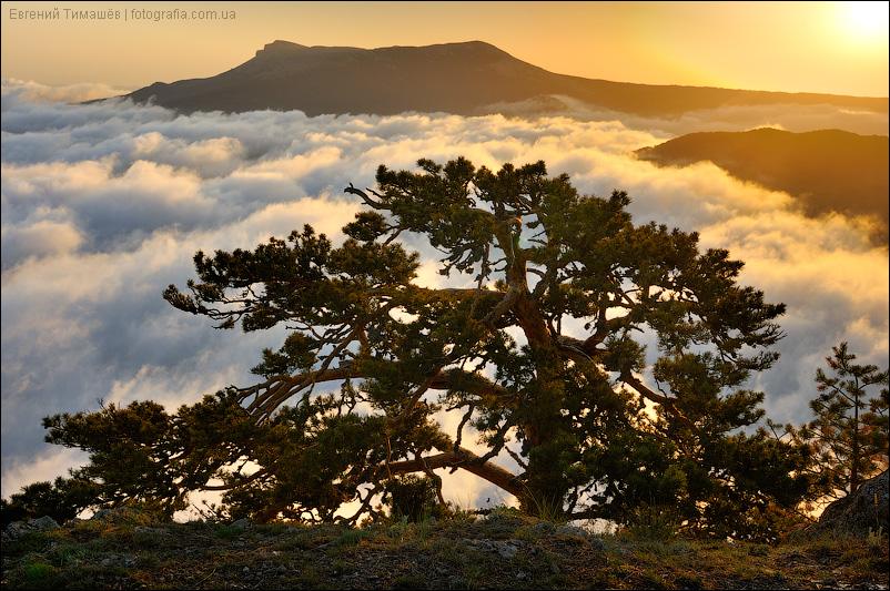 Крым, пейзаж, Демерджи, горы
