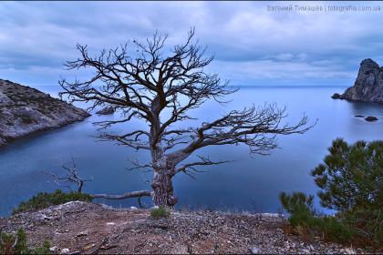 Утро над Голубой бухтой