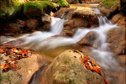 Горная река в Большом каньоне