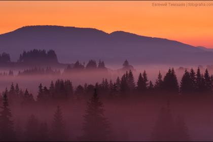 Туман в Яблунице