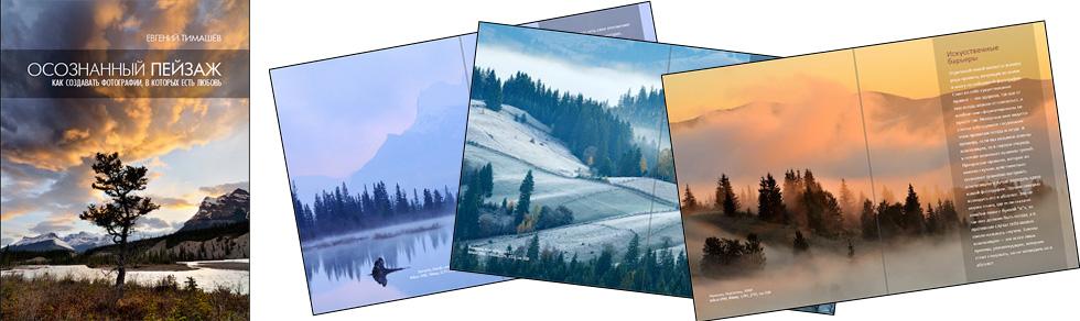 Осознанный пейзаж, книга Евгения Тимашёва