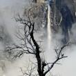 США, пейзажные фотографии Евгения Тимашёва