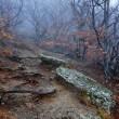 Крым, пейзажные фотографии Евгения Тимашёва